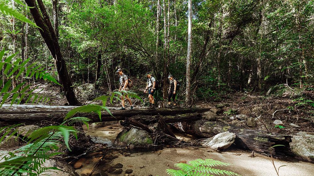 Crossing-a-log-bridge-on-the-trail